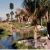 condos-at-the-vintage-club-rancho-mirage-ca.jpg