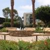 view-park-4.jpg