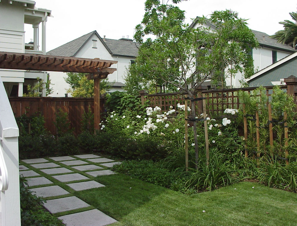 sf-rear-yard-small.jpg