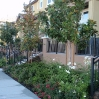 verona-sloped-streetscape-w-trees.jpg